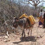 Collecte voor dreigende hongersnood in Afrika